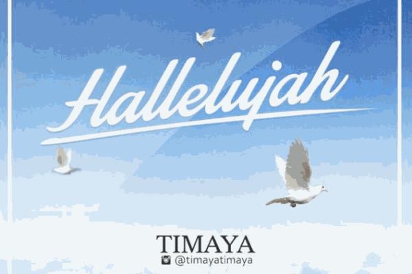Timaya1