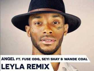 wpid-Angel-Leyla-Remix1