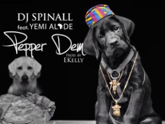 wpid-pepper-dem