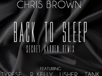 chris-brown-tyrese-back-to-sleep-remix