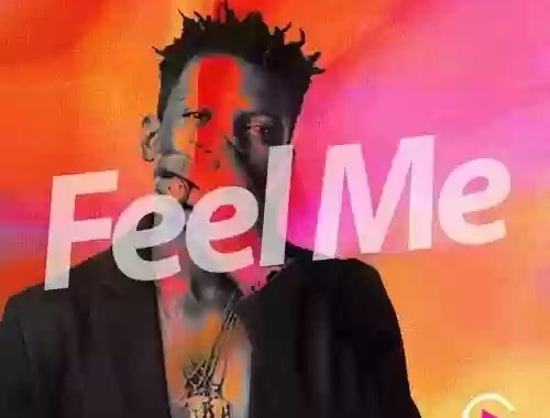Download MP3: Terry Apala – Feel Me