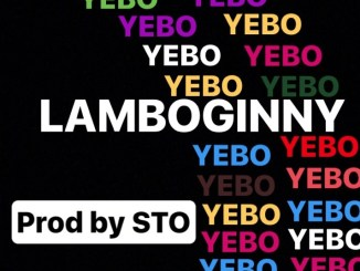 Lamboginny – Yebo mp3 download