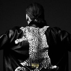 Steve Angello – Freedom ft. Pusha T