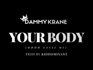 Dammy Krane – Your Body (Odoo Esisi Mi)