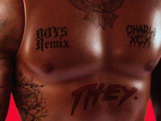 Download Charli XCX & THEY. – Boys (Remix)