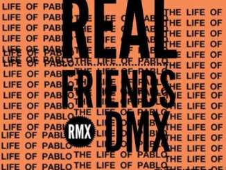 Download DMX - Real Friends Remix