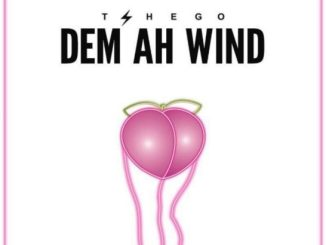 Download Tshego – Dem Ah Wind
