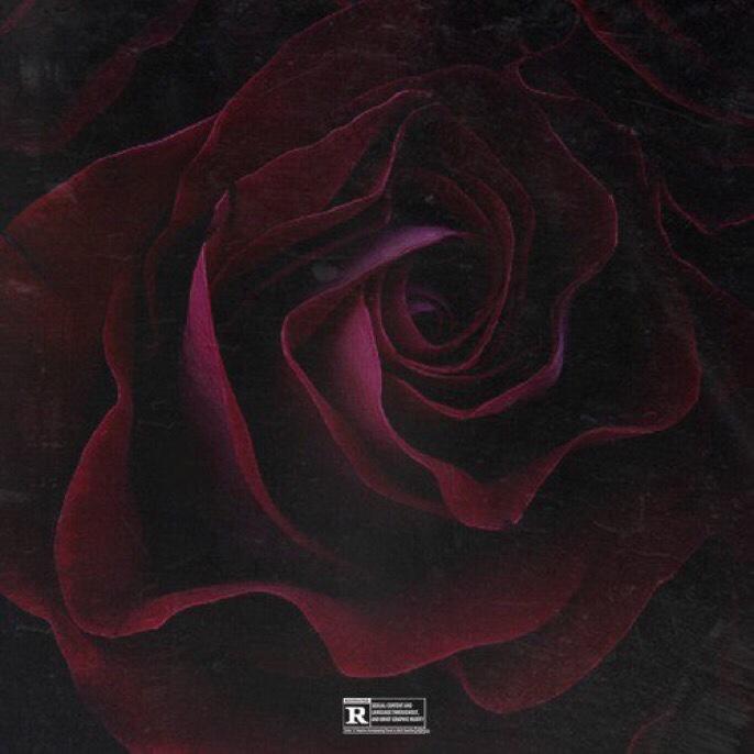Chris Brown - Him Or Me mp3 download