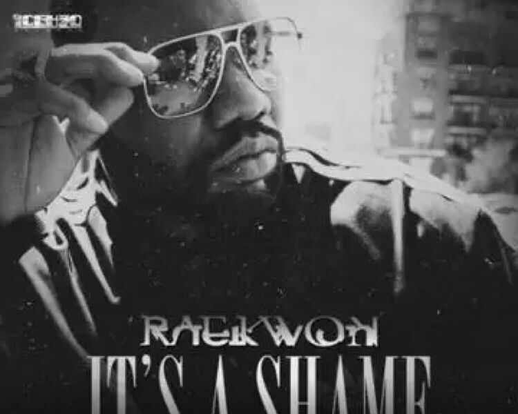 Raekwon - It's A Shame mp3 download