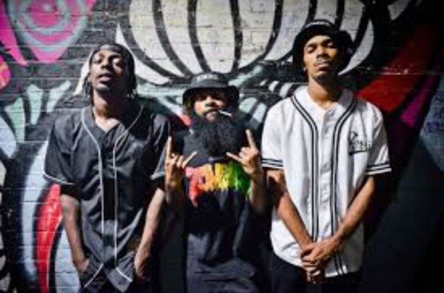 FlatBush Zombies - Vacation In Hell Album download