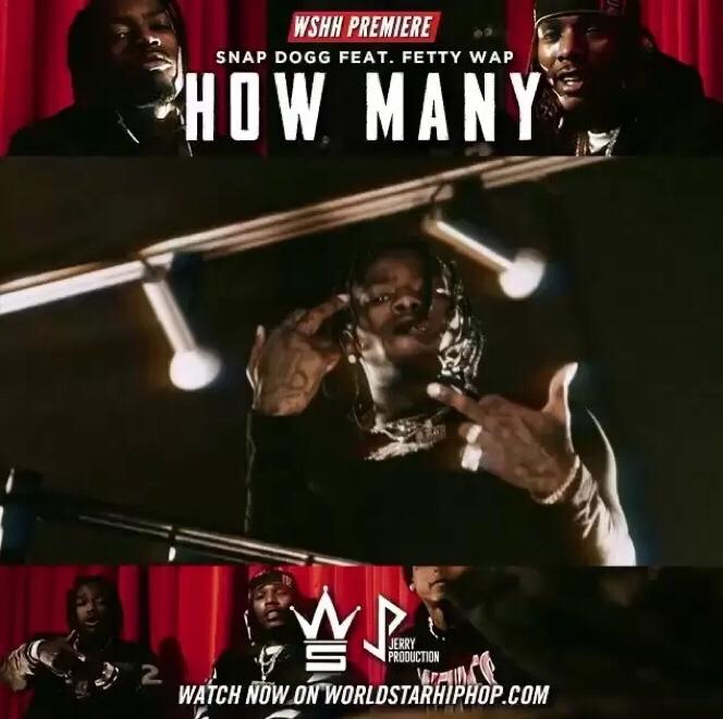 Snap Dogg ft. Fetty Wap - How Many mp3 download