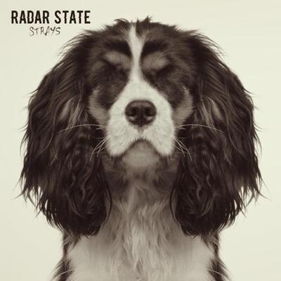 Radar State – Strays (album)