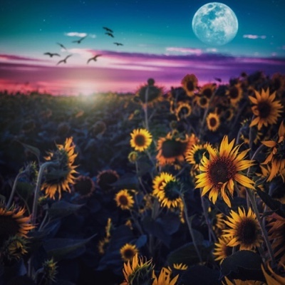 Chuck Ba$$ – The Moonshine (Album download)