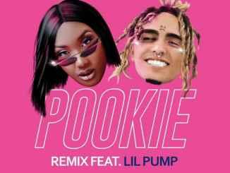 Aya Nakamura – Pookie (Remix) Ft. Lil Pump