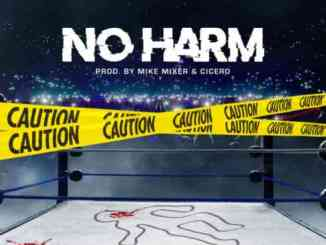 Babyy Chris 2K - No Harm Ft. Kevin Gates (download)