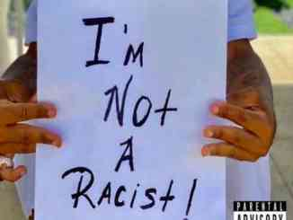 Plies - I'm Not A Racist (download)