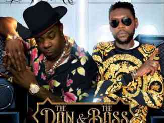 Busta Rhymes - The Don & The Boss Ft. Vybz Kartel (download)