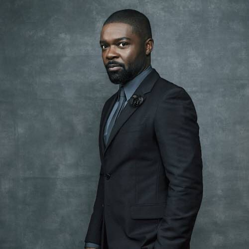 David Oyelowo Feels His Acting Experience Helped Him To Be Become A Director
