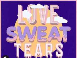 The Him – Love, Sweat & Tears ft. Danny Shah (download)