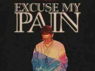 J.I the Prince of N.Y – Excuse My Pain (download)