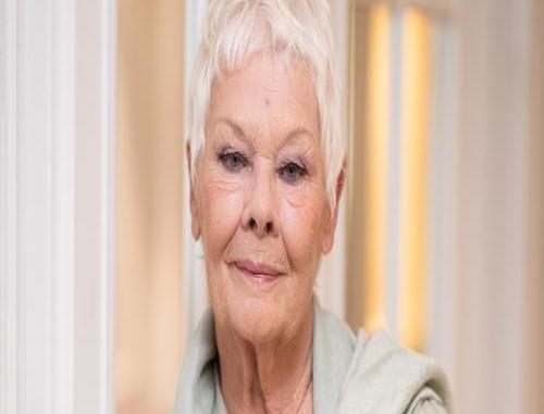 Judi Dench Hopes Her New Movie Will Help Viewers Forget Their Worries