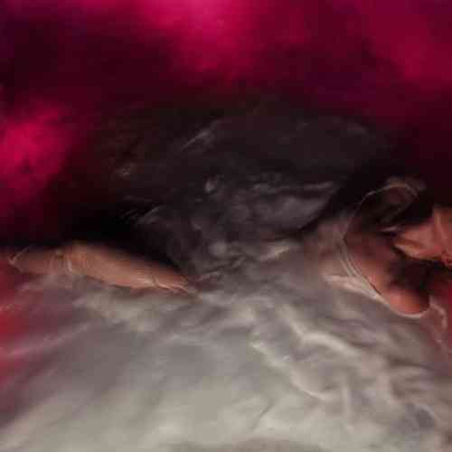 Hayley Williams – FLOWERS for VASES / descansos Album (download)