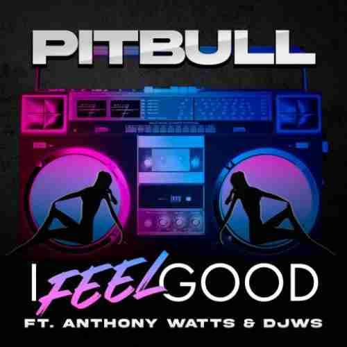 Pitbull – I Feel Good F. Anthony Watts & DJWS (download)
