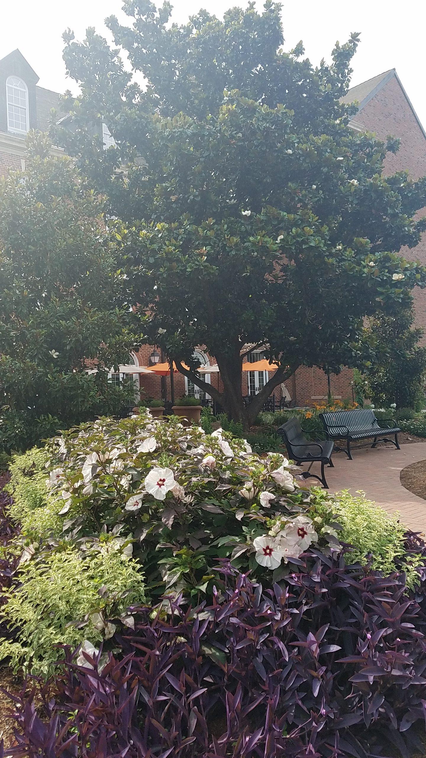 The Price Family Garden in Stillwater, Oklahoma
