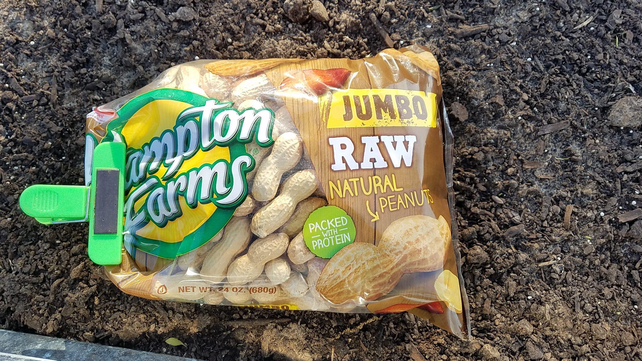 Bag of jumbo raw peanuts