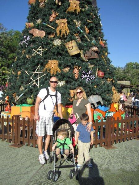 animal-kingdom-tree-christmas-disney-world