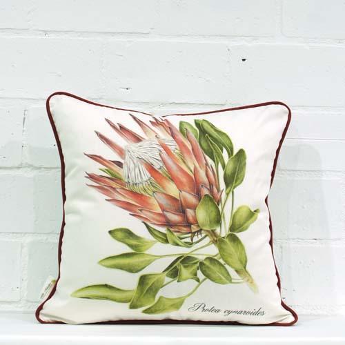 Cynaroides Cushion