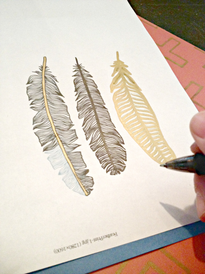 Tracing Feathers