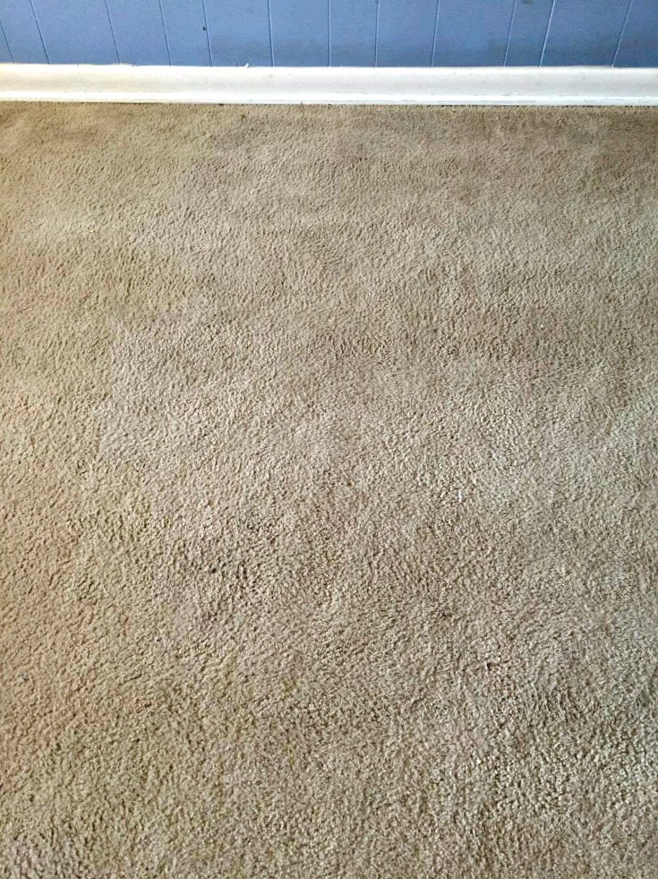 Best way to clean carpet