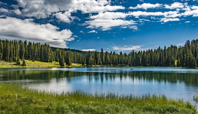 Lake in Grand Mesa National Forest in Colorado