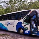 viazul-tourist-bus