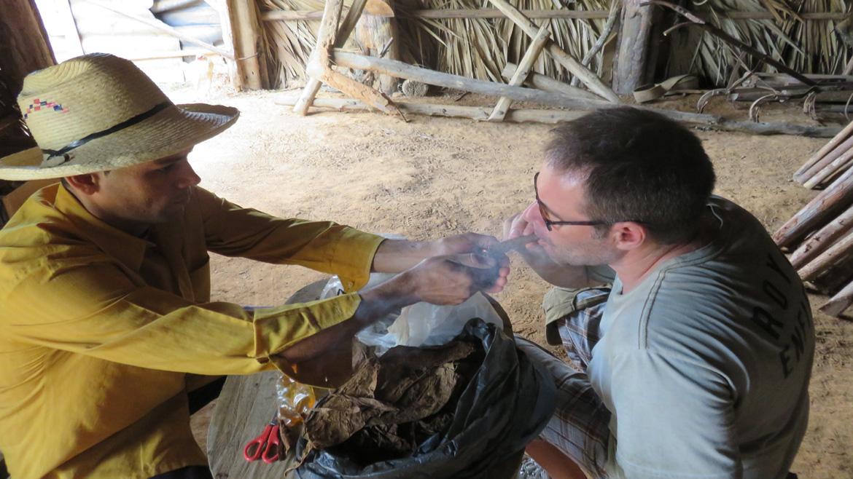 Cigars in Vinales