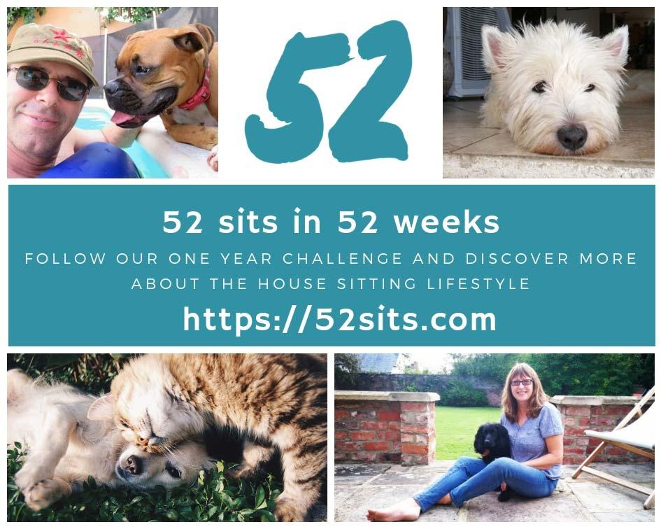 52 sits challenge
