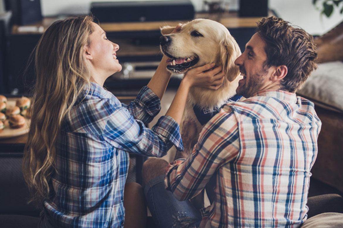 Dates for 2019 House & Pet Sitting Conference Announced!