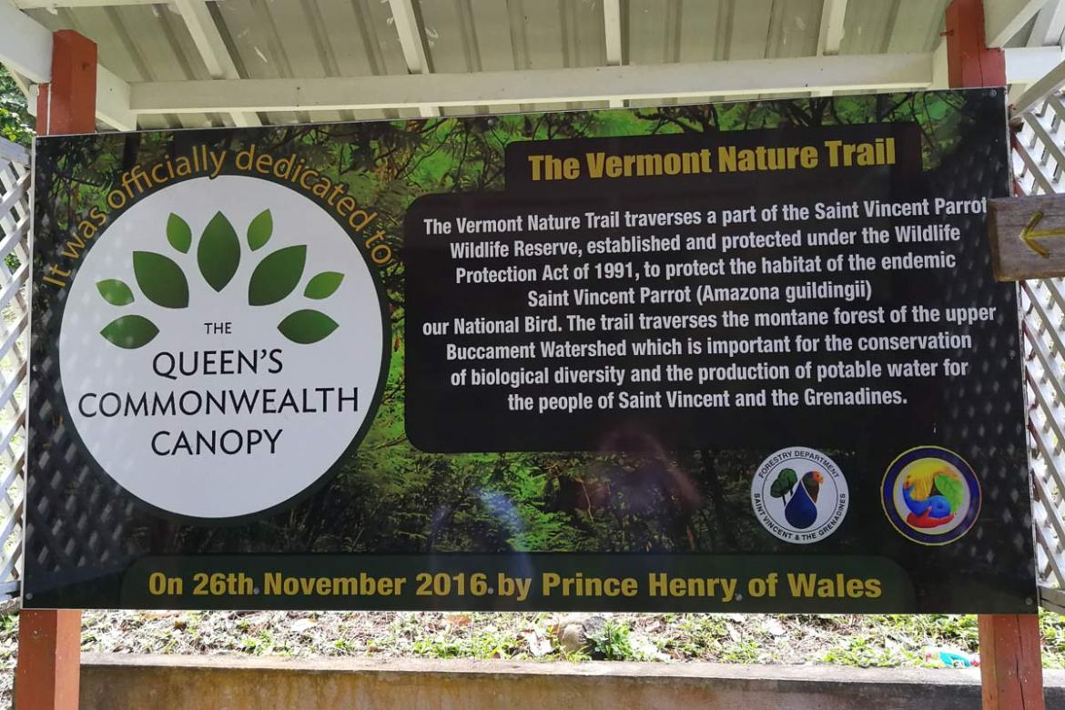 The Vermont Nature Trail