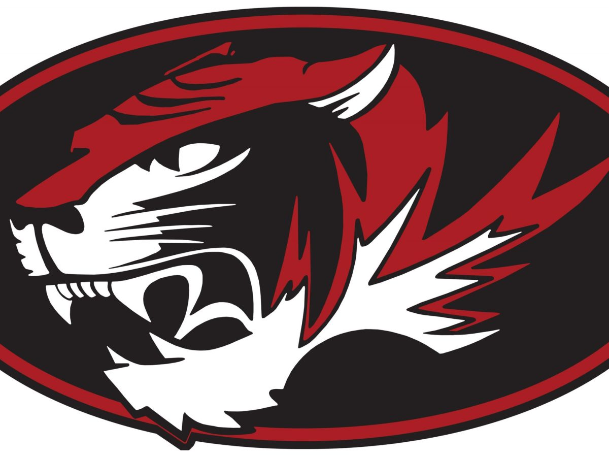 Picture of Tiger logo