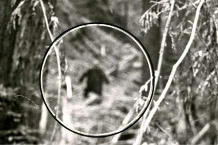 Southeast Texas Bigfoot Conference Comes To Huntsville