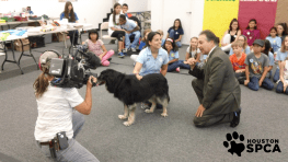 KHOU visited Critter Camp to film their Pet of the Week segment - Marley the dog visited with all our Critter Campers during his special TV appearance!