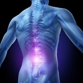 back pain, pain in the back, back pain houston, houston back pain