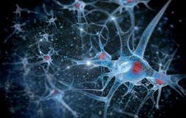 stem cell, stem cell injections, regenerative medicine