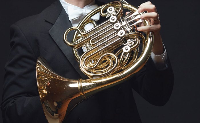 Musician holding a French horn