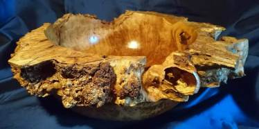 Burl van eiken, rond 50 cm en 15 cm hoog