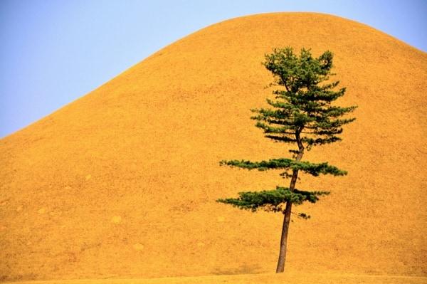 Tumulo en Gyeongju