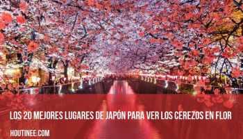 Los 20 mejores lugares de Japón para ver los cerezos en flor