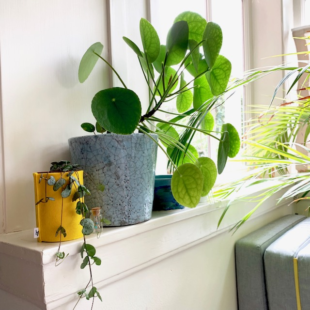 vilt in je interieur: doen! deze leuke bloempot maak je met een blik en de vrolijk gele vilten hoes van houtmoed