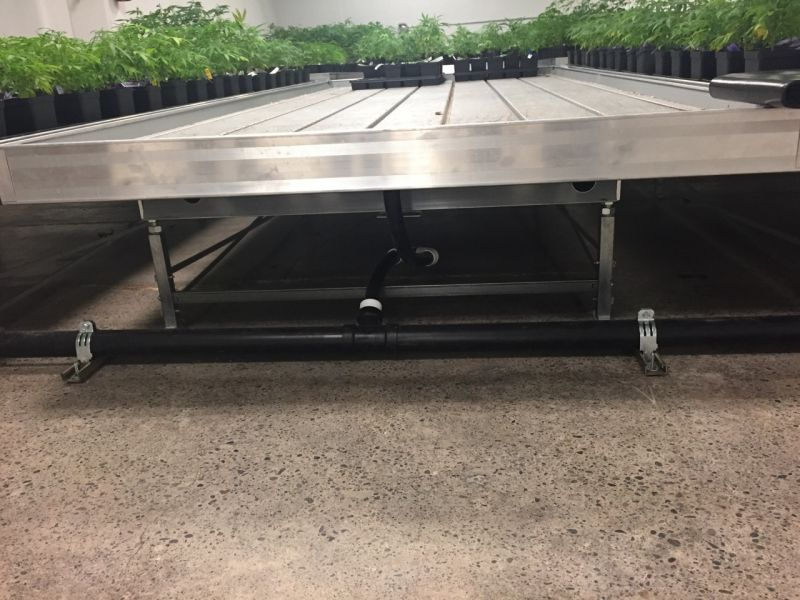 Fixed Amp Rolling Benches